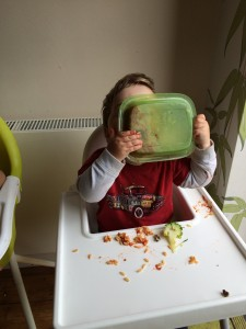 At least one of my kids likes my cooking enough to lick the plate!